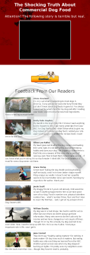 ABC For Dog Owners - Dog Food, Health, Training Ebook preview. Click for more details