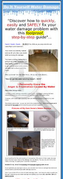 Do It Yourself Water Damage - Earn $25 Per Sale! preview. Click for more details