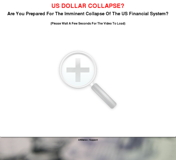 Financial Survival - Survive The Fall Of The Usd! preview. Click for more details