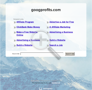 Google Profits. preview. Click for more details