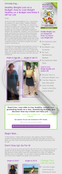 Healthy Weight Loss On A Budget: Keep It Off For Life preview. Click for more details