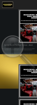 Success Secrets You Need To Know - Ebook preview. Click for more details