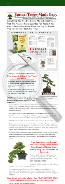 The Bonsai Tree Care System preview. Click for more details