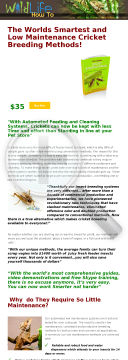 The Complete Cricket Breeding Manual preview. Click for more details