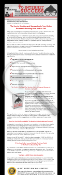 The Newbies Guide To Internet Success preview. Click for more details