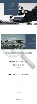 Winplaytips Each Way Horse Racing Group preview. Click for more details